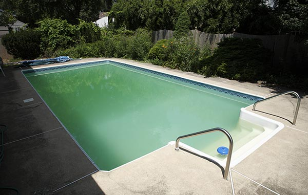 Causes Of Green Pool Water Aqua Tech