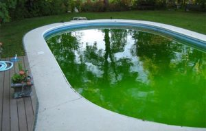 moderate-green
